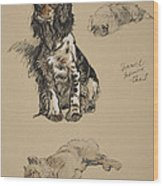 Spaniel, Pekinese And Chow, 1930 Wood Print