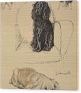 Spaniels, 1930, Illustrations Wood Print