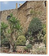 Spanish Church Garden Wood Print