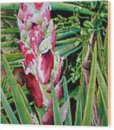 Spanish Dagger IIi Wood Print
