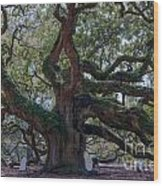 Spanish Moss Draped Limbs Wood Print