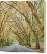 Spanish Moss - Symbol Of The South Wood Print by Christine Till