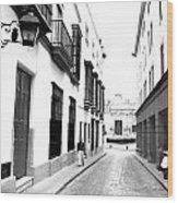 Spanish Street 2 Wood Print