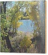 Sparkle Lake Wood Print