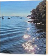 Sparkles And Twinkles Wood Print