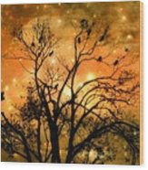 Sparkling Stars Light The Sky Wood Print