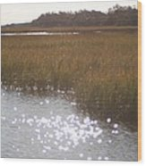 Sparkling  Marsh Wood Print