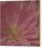 Sparkling Pink Wood Print
