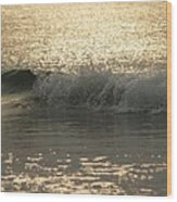 Sparkling Sea In Hunting Island Dawn Wood Print