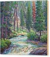 Sparkling Stream Wood Print