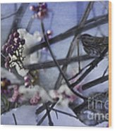 Sparrow And The Beauty Berry Wood Print