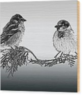 Sparrow Digital Art Wood Print