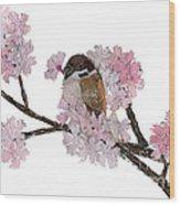 Sparrow Art  Wood Print
