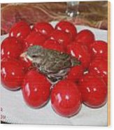 Sparrow On Red Eggs Wood Print