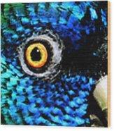 Speaking Eye  Wood Print