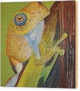 Speckled Frog Wood Print