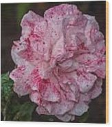 Speckled Rose Wood Print