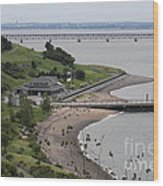 Spectacle Island Boston Massachusetts Wood Print