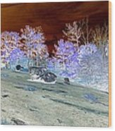 Spectral Wilderness And Copper Sky Wood Print