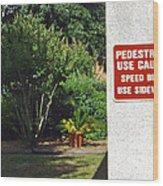 Speed Bumps Use Sidewalks Wood Print