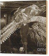 Sperm Whale Taken At Moss Landing California  On January 22 1919 Wood Print