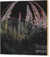 Spherescape 2  Wood Print
