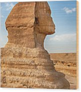 Sphinx Profile Wood Print by Jane Rix
