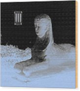 Sphinx Statue Three Quarter Profile Blue Glow Usa Wood Print