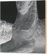 Sphinx Statue Three Quarter Profile Bw Glow Usa Wood Print