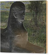 Sphinx Statue Three Quarter Profile Solar Usa Wood Print