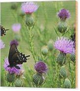 Spicebush Swallowtail Heaven Wood Print