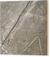 Spider Geoglyph Wood Print