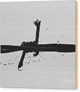 Spider On The Barbed Wire Wood Print