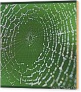 Spider Web Wood Print