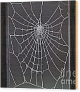 Spider Web With Frost Wood Print
