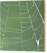 Spiderweb 3 Wood Print