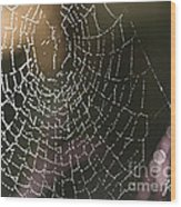 Spiderweb Green Wood Print by Artist and Photographer Laura Wrede
