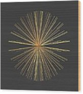 Spikes... Wood Print