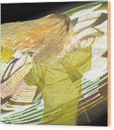 Spinning By Jan Marvin Wood Print