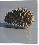 Spiny Reflections Wood Print