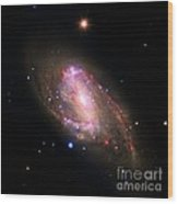 Spiral Galaxy Ngc 3627, Composite Image Wood Print