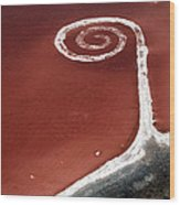Spiral Jetty From The Air Wood Print