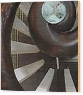 Spiral Railing And Puppy Wood Print