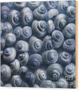 Spirals Blue Wood Print