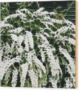 Spirea Expressive Brushstrokes Wood Print