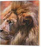 Spirit Of The Lion Wood Print