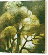 Spirit Of The Tarairi Tree Wood Print by Patricia Howitt