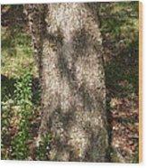 Spirit Of The Tree-6 Wood Print