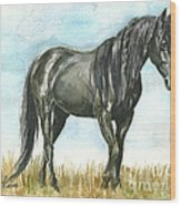 Spirit Wild Horse In Sanctuary Wood Print by Linda L Martin