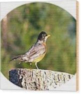 Spirited Robin Wood Print